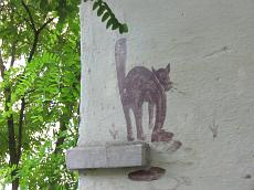 Львівські звірюки. Кішки та песики